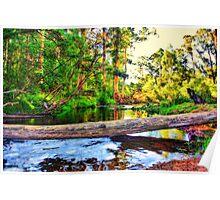 Latrobe River V10 Poster