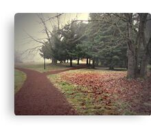 Take the Right Way to the Zee in the Trees Metal Print
