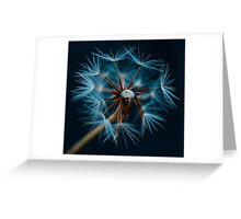 Fortuneteller Greeting Card
