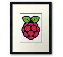 raspberry pi  Framed Print