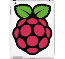 raspberry pi  iPad Case/Skin