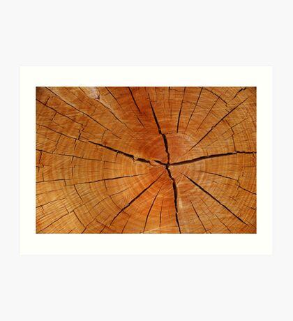 Woodage Art Print