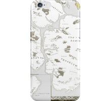 Fantasy Map of New York City: Modern iPhone Case/Skin