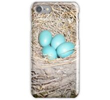 The Sweetest Easter Eggs iPhone Case/Skin