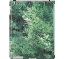 Green branch iPad Case/Skin