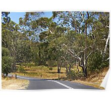 Megalong Valley NSW Poster