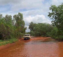 Driving through water by Saren Dobkins