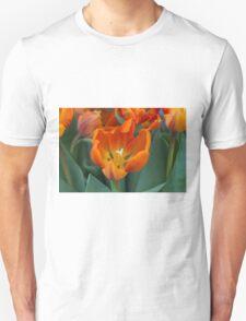 tulips in bloom T-Shirt