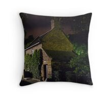 Melbourne at night - Cooks Cottage rear Throw Pillow