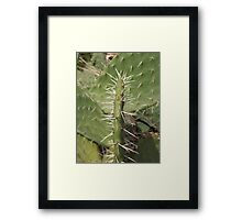 Ouch! Framed Print