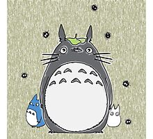 Will you be my neighbor Totoro? Photographic Print