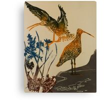 Curlews on the beach Canvas Print