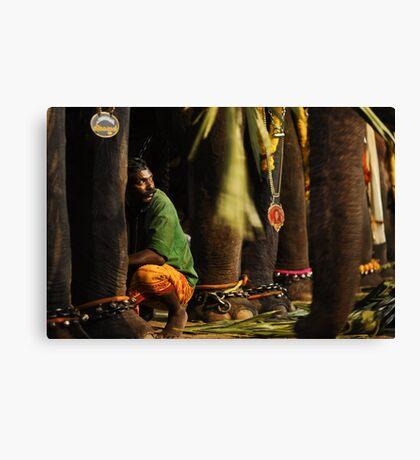 Mahut (elephant trainer) Canvas Print