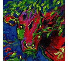 Colourful cow! Photographic Print
