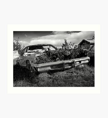 The Old Dodge In The Country Art Print