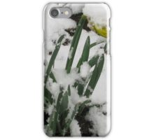 and who said it was spring then .................. iPhone Case/Skin