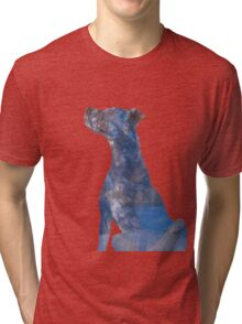 Little Dog Blue Tri-blend T-Shirt