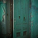 Aqua Door by PolarityPhoto