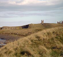 Dunstanburgh Castle from the dunes by Candidatejo