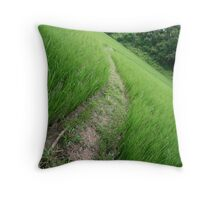 Long Winding Path Throw Pillow