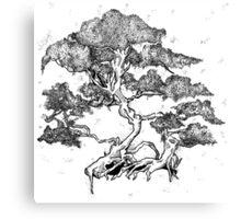 Bonsai Tree Original Artwork Canvas Print