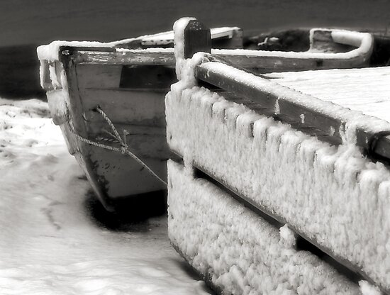 Winter Storage by Dave  Higgins