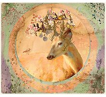 Melody of Spring - Song Forest Spirit  Photographic Print