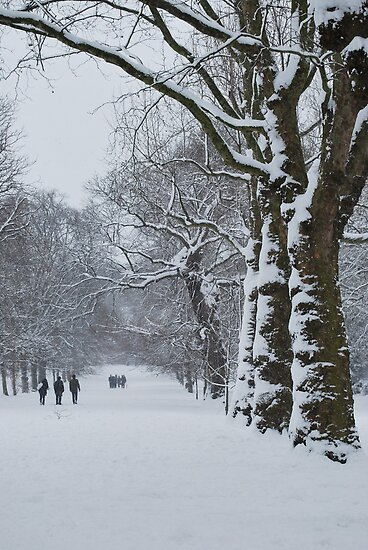 Greenwich Park 1 by Karen Martin