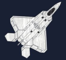 F 22 Stealth Fighter Jet by quark