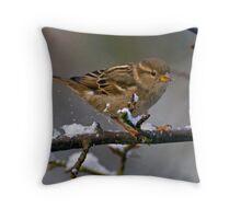 Snowboarding Sparrow Throw Pillow