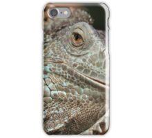Iguana iPhone Case/Skin