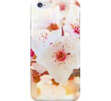 spring . 20 Março 2015. iPhone Case/Skin