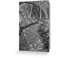 Walkway to nowhere. Greeting Card