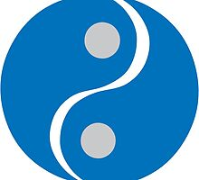 Chinese Yin Yang Symbol by retromoomin