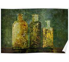Mustard Bottles Poster