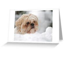 Lola Greeting Card