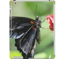 Swallow tail Butterfly iPad Case/Skin