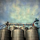 Walla Walla grain silos by detrange