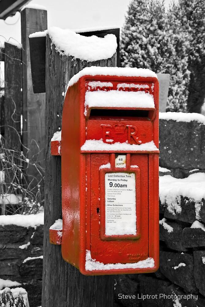 'Snail Mail' Box by Steve  Liptrot