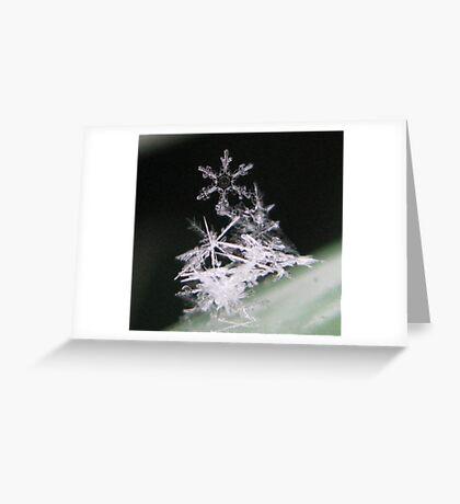 SNOWFLAKE PILE Greeting Card