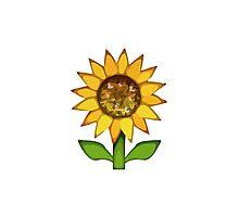 Sunflower Apple / WhatsApp Emoji Photographic Print