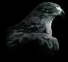Dark Eagle by Wolfwalker