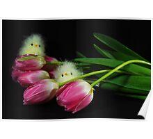 Birds In Bloom Poster