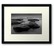 Black Seaweed Framed Print