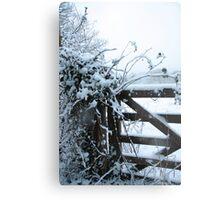 Snowy gate Metal Print
