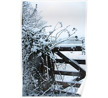 Snowy gate Poster
