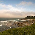 Oregon Coast  by Jenny Miller