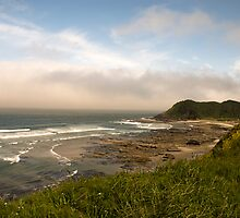Oregon Coast  by Jenny Ryan