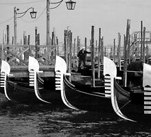 Venice Gondolas by Luke Martin