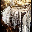 Ice Age - Like Gold by HELUA